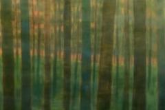 tree painting series 5