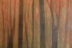 Woods Aglow 31x48